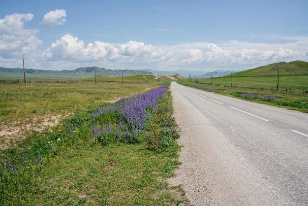 Cudowny krajobraz z długą asfaltową drogą przez zielone pola z widokiem na góry na horyzoncie