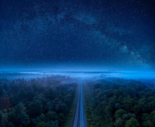Cudowny letni krajobraz nocny, rozgwieżdżone niebo i sosnowy las, przez który przebiega linia kolejowa. mistyczna lub magiczna atmosfera.