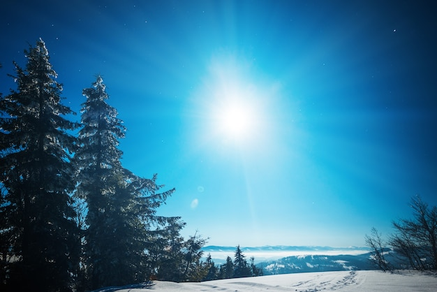 Cudowny piękny zimowy krajobraz