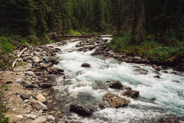 Cudowny szybki strumień wody z lodowca w dzikiej górskiej zatoczce z kamieniami. niesamowity krajobraz z potokiem, bogatą roślinnością, lasem i górami. atmosferyczna sceneria gór.