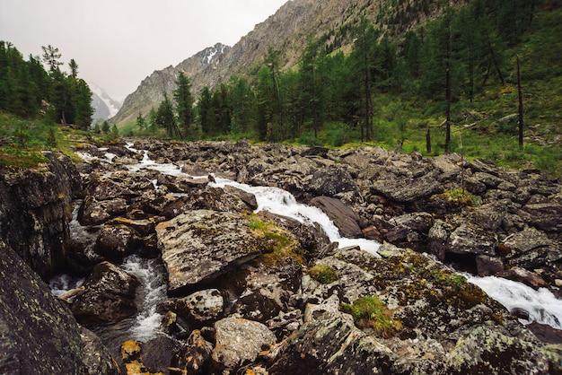 Cudowny szybki strumień wody z lodowca w dzikim górskim potoku z dużymi mokrymi kamieniami. niesamowity krajobraz z lasem i zaśnieżonymi górami. atmosferyczna sceneria gór.