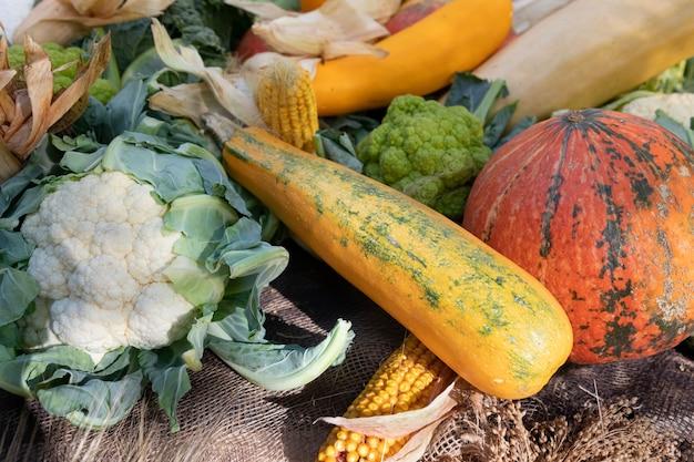 Cukinia, kalafior, dynia, kukurydza i inne warzywa na ladzie targów rolniczych