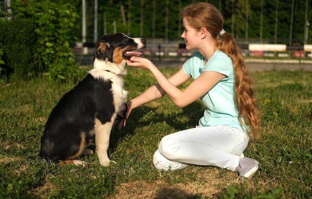 Cute nastolatka szkolenia owczarek australijski trzy kolory szczeniak psa w lecie. właściciel. treser. koncepcja opieki nad zwierzętami. miłość i przyjaźń między człowiekiem a zwierzęciem.