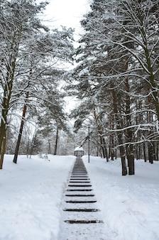 Cyklon daniella przyniósł opady śniegu