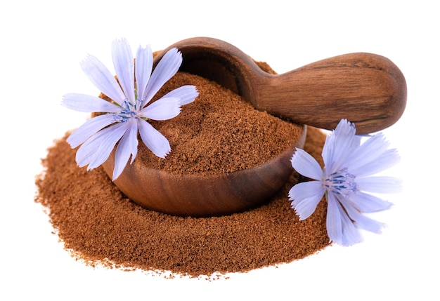 Cykoria w proszku i kwiat w drewnianej misce i łyżce na białym tle cichorium intybus