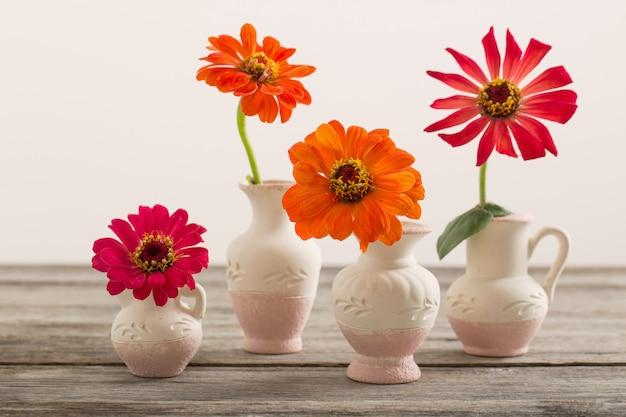 Cynia kwiat w wazonie
