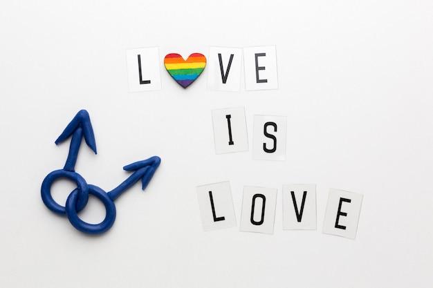 """Cytat orientacji seksualnej męsko-męskiej """"miłość jest miłością"""""""
