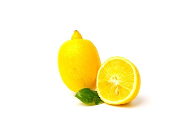 Cytryna z plasterkiem i liściem na białym tle.