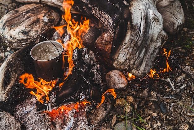 Czajnik stoi w ogniu. gotowanie na dziko przy ogniu. piękny duży kłód pali się w zbliżeniu ogniska. przetrwanie w dzikiej przyrodzie. cudowny płomień z kociołkiem. garnek płonie. tło ognisko.
