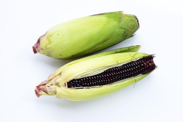 Czarna kukurudza na białym tle