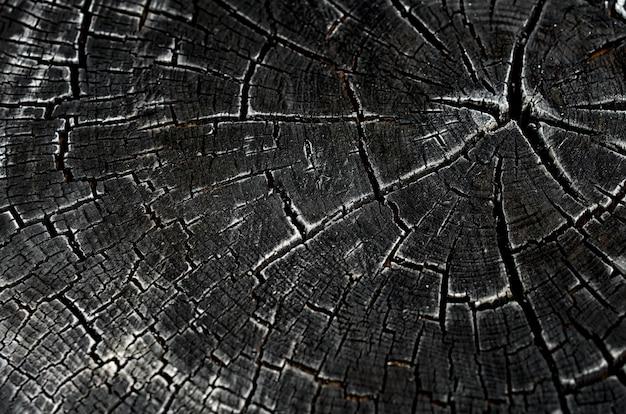 Czarna powierzchnia tekstury spalonego drewna