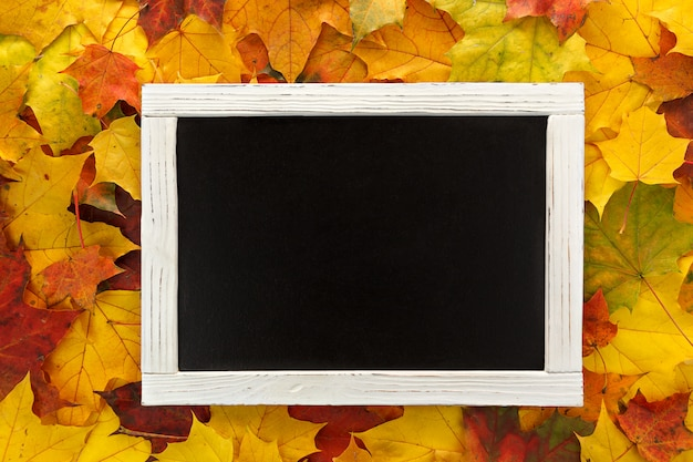 Czarna tablica w białej ramce leży na tle jesiennych liści klonu.