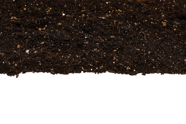 Czarna ziemia dla roślin na białym tle.