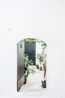 Czarne drewniane drzwi w pobliżu zielonej rośliny