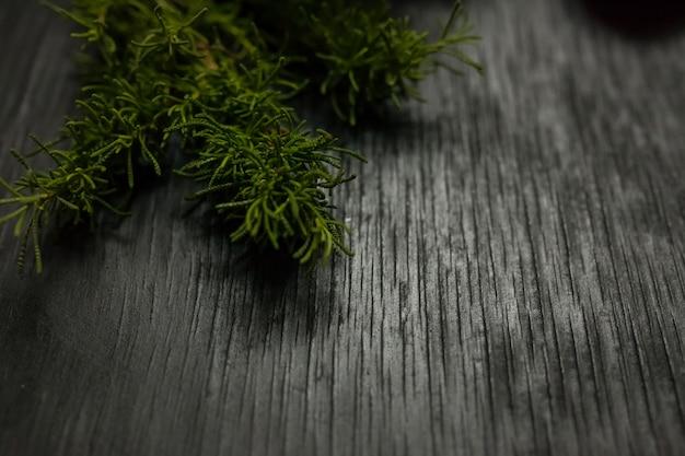 Czarne drewniane tła z mchu po bokach. grunge tekstur
