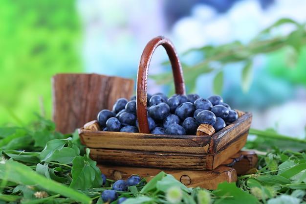 Czarne jagody w drewnianym koszu na trawie na naturze