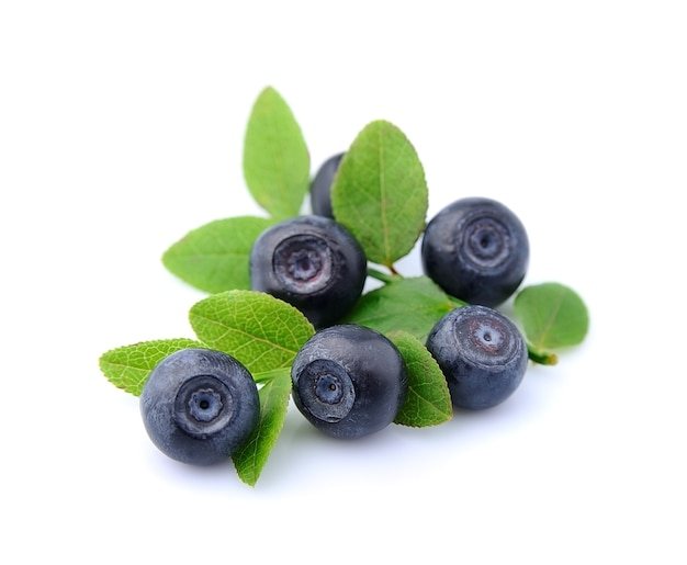 Czarne jagody z liśćmi na białym tle