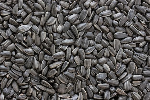 Czarne nasiona słonecznika