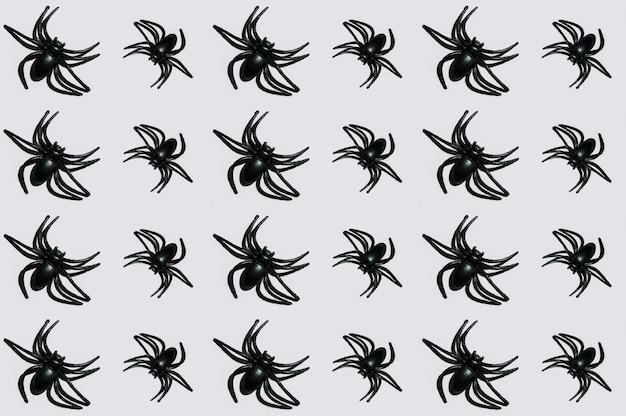 Czarne pająki układane w linie