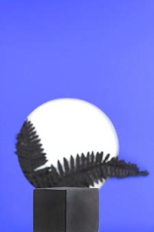 Czarne podium do prezentacji produktu na niebieskim tle z okrągłym otworem, z którego wychodzi czarna paproć...