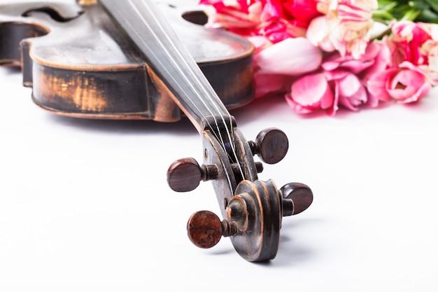 Czarne stare skrzypce z tulipanami na białym tle