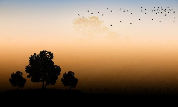 Czarne sylwetki, drzewa i ptaki, o zachodzie słońca.