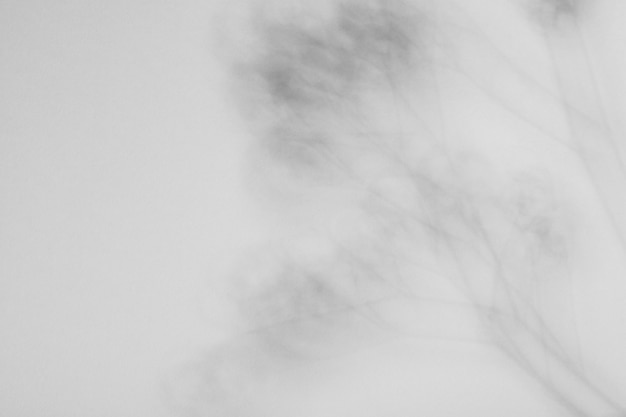 Czarno-biała abstrakcja tapeta