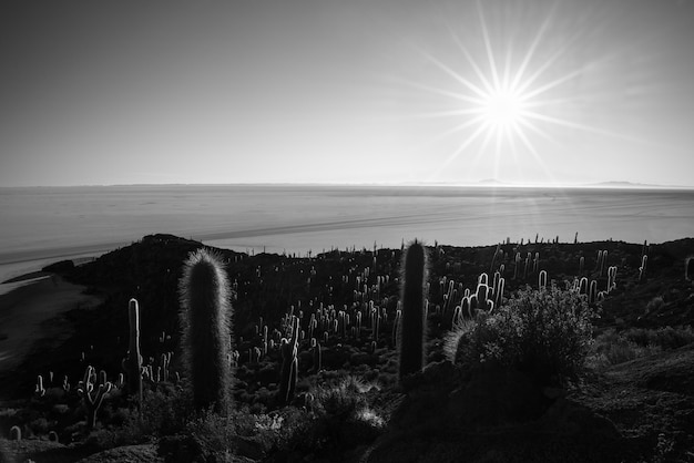 Czarno-biała, gwiazda słońca nad uyuni salt flat, boliwia