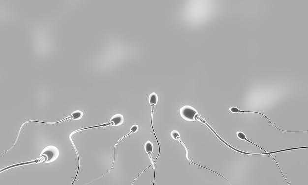 Czarno-białe mikroskopijne plemniki