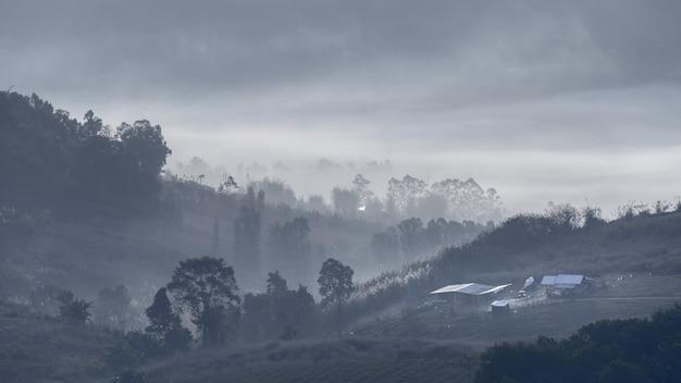 Czarno-białe tło tapety góry i mgły