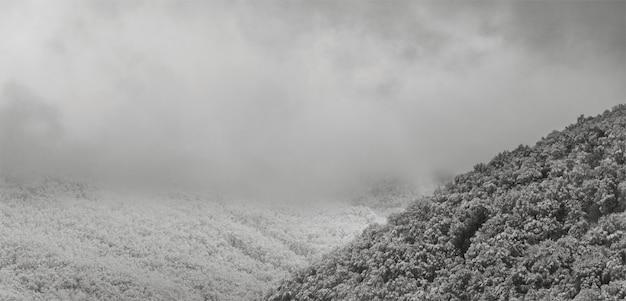 Czarno-białe zdjęcie pokryte śniegiem wzgórza w chmurach wczesnym zimowym porankiem u podnóża kaukazu.