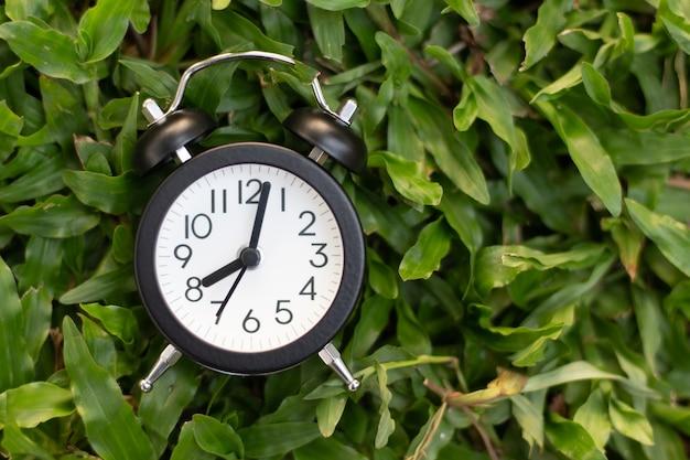 Czarny budzik na zielonej trawy tle - czasu pojęcie