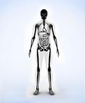Czarny cyfrowy szkielet