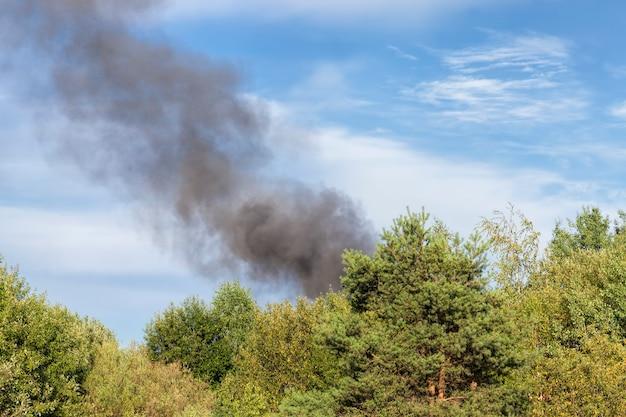 Czarny dym z płonących drzew leśnych i budynków na tle błękitnego nieba