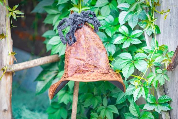 Czarny futrzany pająk siedzi na kapeluszu wiedźmy, czas odpoczynku.