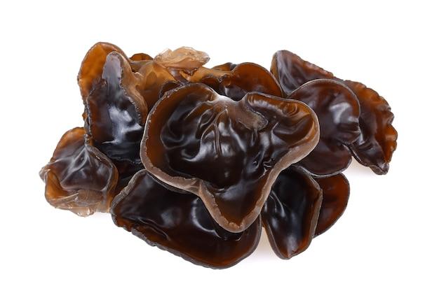 Czarny grzyb na białym tle