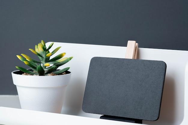 Czarny klamerki blackboard na nowożytnym ołówkowym pudełku i zielonej roślinie