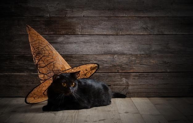 Czarny kot w czarownica kapeluszu na drewnie