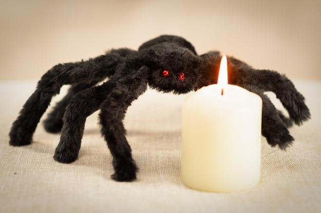 Czarny kudłaty pająk z czerwonymi oczami patrzy na płonącą białą świecę.