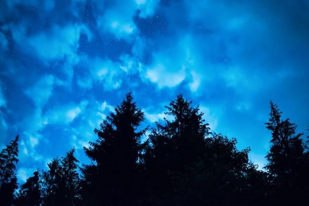 Czarny las z drzewami na niebieskim nocnym niebie z wieloma gwiazdami. droga mleczna w tle