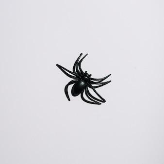 Czarny pająk po środku