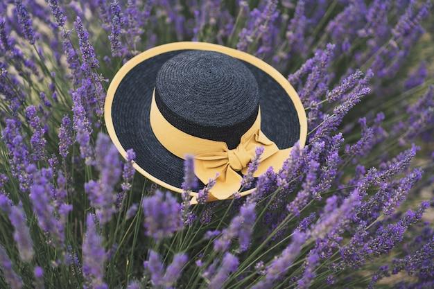 Czarny słomkowy kapelusz z żółtą wstążką na lawendowym polu w prowansji, francja
