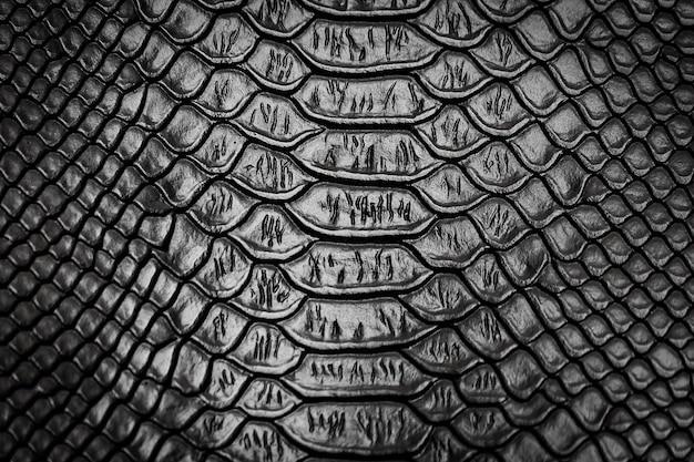 Czarny wąż skóry wzoru tekstury tło