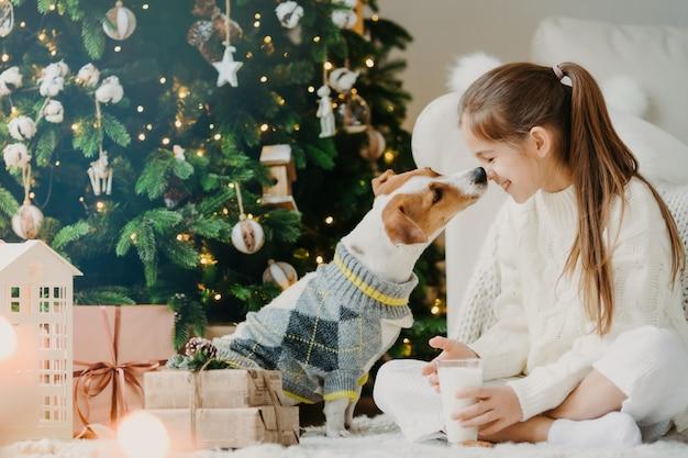 Czas magiczny i krajowa atmosfera. szczęśliwy przyjazny pocałunek dziecka i psa, wyraża wzajemną miłość i troskę, pije świeże mleko, odpoczywa po udekorowaniu choinki. dzieci, zwierzęta domowe.