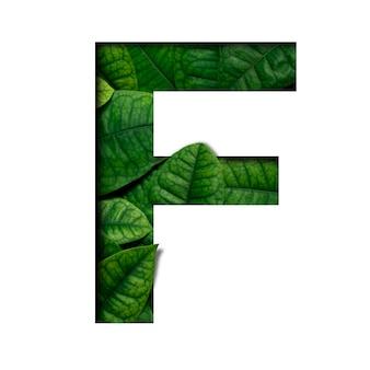 Czcionka leafs f wykonana z żywych liści real z wyciętym papierem w kształcie wyciętego papieru precious. czcionka leafs.