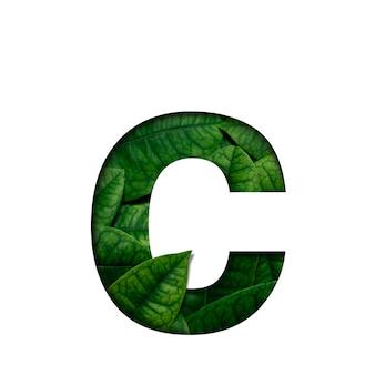 Czcionki c wykonane z żywych liści real w kształcie wyciętego papieru precious.