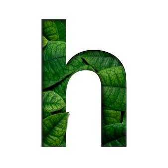 Czcionki h wykonane z żywych liści real w kształcie wyciętego papieru precious.
