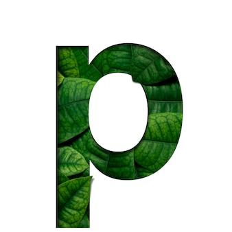 Czcionki p wykonane z żywych liści real w kształcie wyciętego papieru precious.