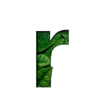 Czcionki r wykonane z żywych liści real w kształcie wyciętego papieru precious.