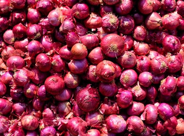 Czerwona cebula. tło i tekstura. ekologiczne produkty rolnika